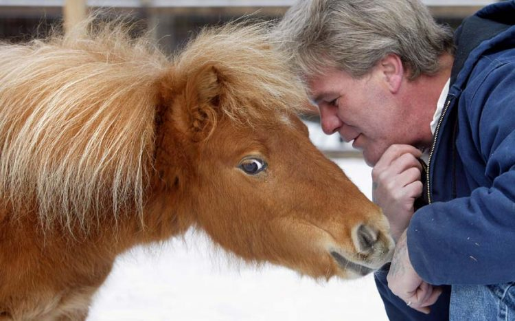 12/15/2002 -- Ellsworth, Maine -- Dan Shaw talks to his Guide Horse Cuddles.