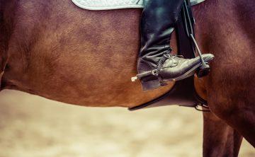 łydka-jeźdźca-koń