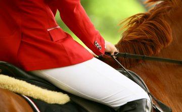 koń-kasztan-jazda-dosiad
