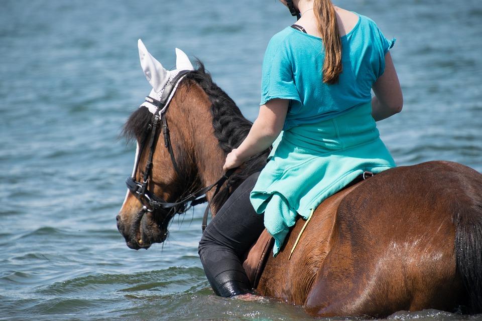 koń-dziewczyna-woda